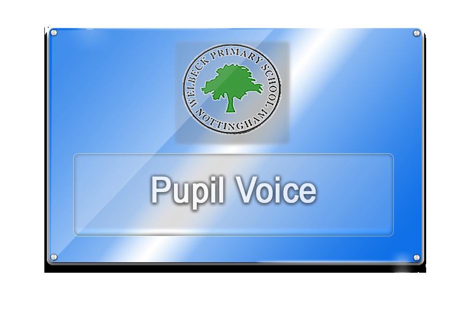PupilVoice_BlueGlassMar17